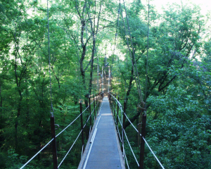 Lullwater Park is an area of green space near Emory University that contributes to positive environmental impacts. / From western access / Buddha Dog / Creative Commons Flickr Images